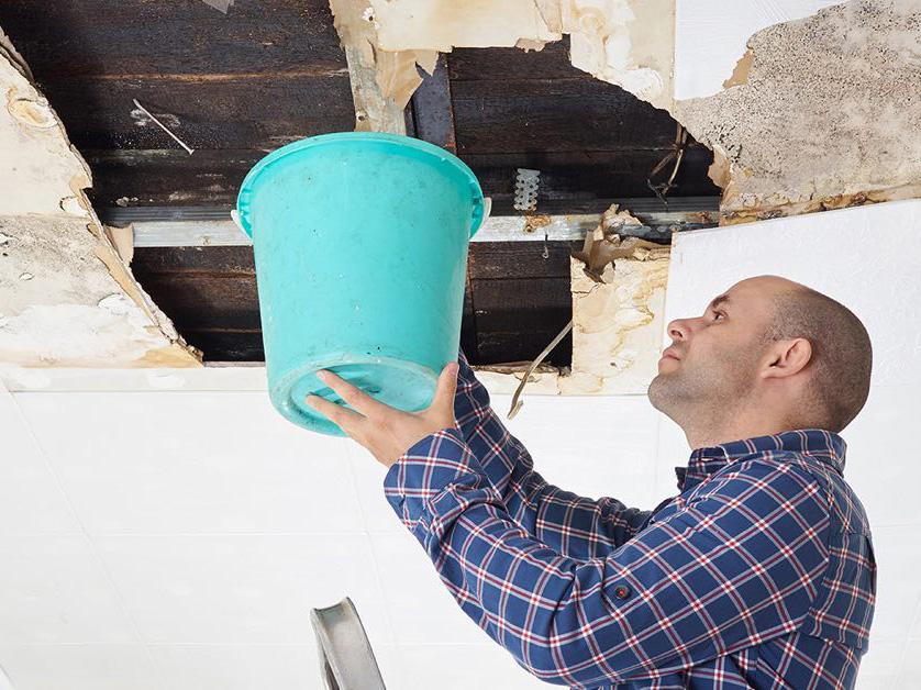 Garantie und Gewährleistung Tipps vom Immobilienprofi